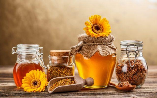 فروش عمده عسل ارگانیک و طبیعی